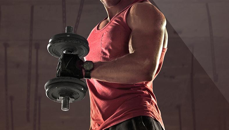 Gesundheitstraining Muskelaufbau
